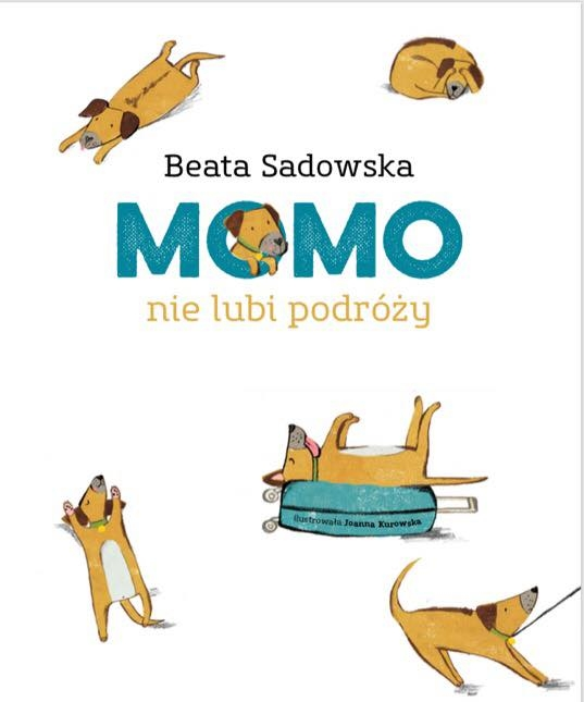 Momo książka